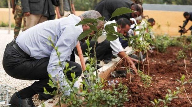 Etiyopya 353 Milyon fidan dikimini bir güç içerisinde gerçekleştirerek dünya rekorlar kitabına girdi.