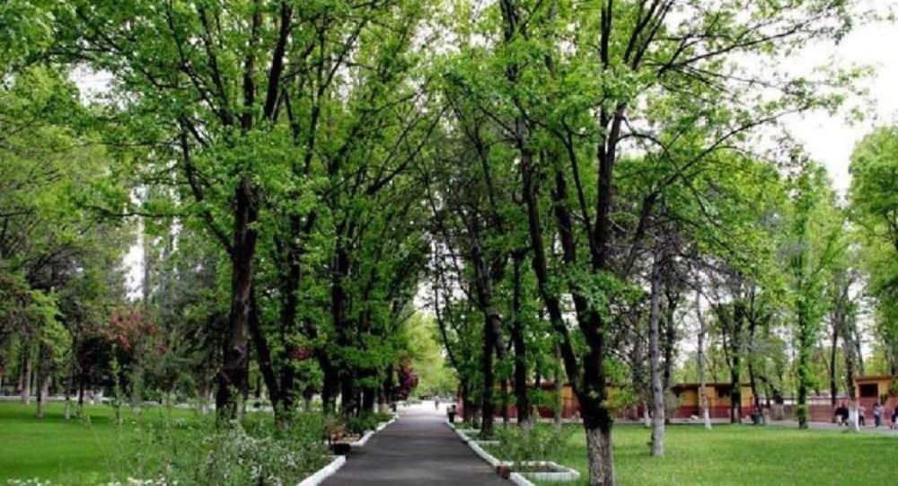 Atatürk Orman Çiftliği Arazileri Tekrar Kiralanıyor
