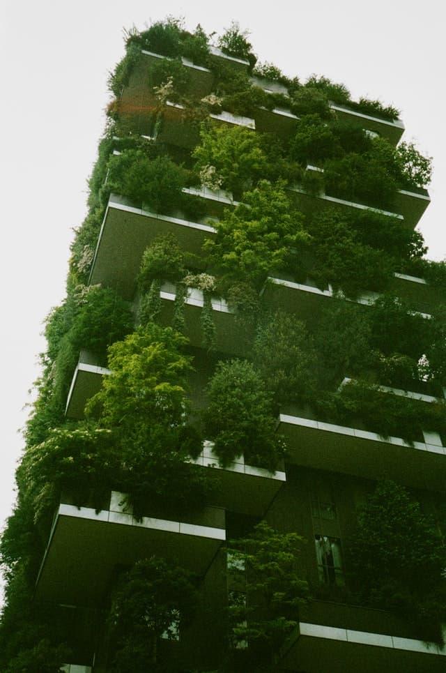 Yeşil Çimento: Tanımı, Çeşitleri, Avantajları ve Uygulamaları